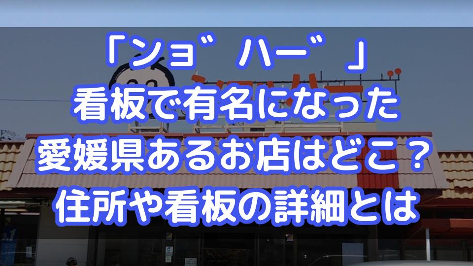 ンョ゛ハー゛」の看板で有名な、愛媛県あるお店はどこにある